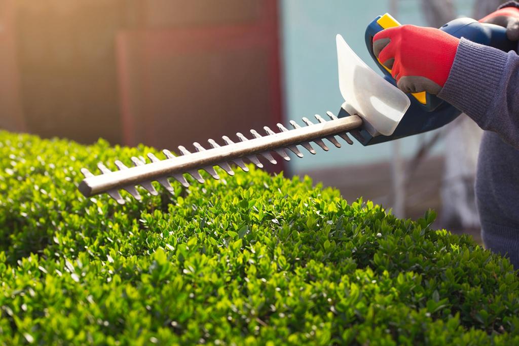 Nélkülözhetetlen szerszámok: ezeket szerezd be, ha kertes házban élsz